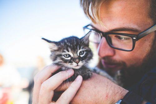 子猫を抱く男性